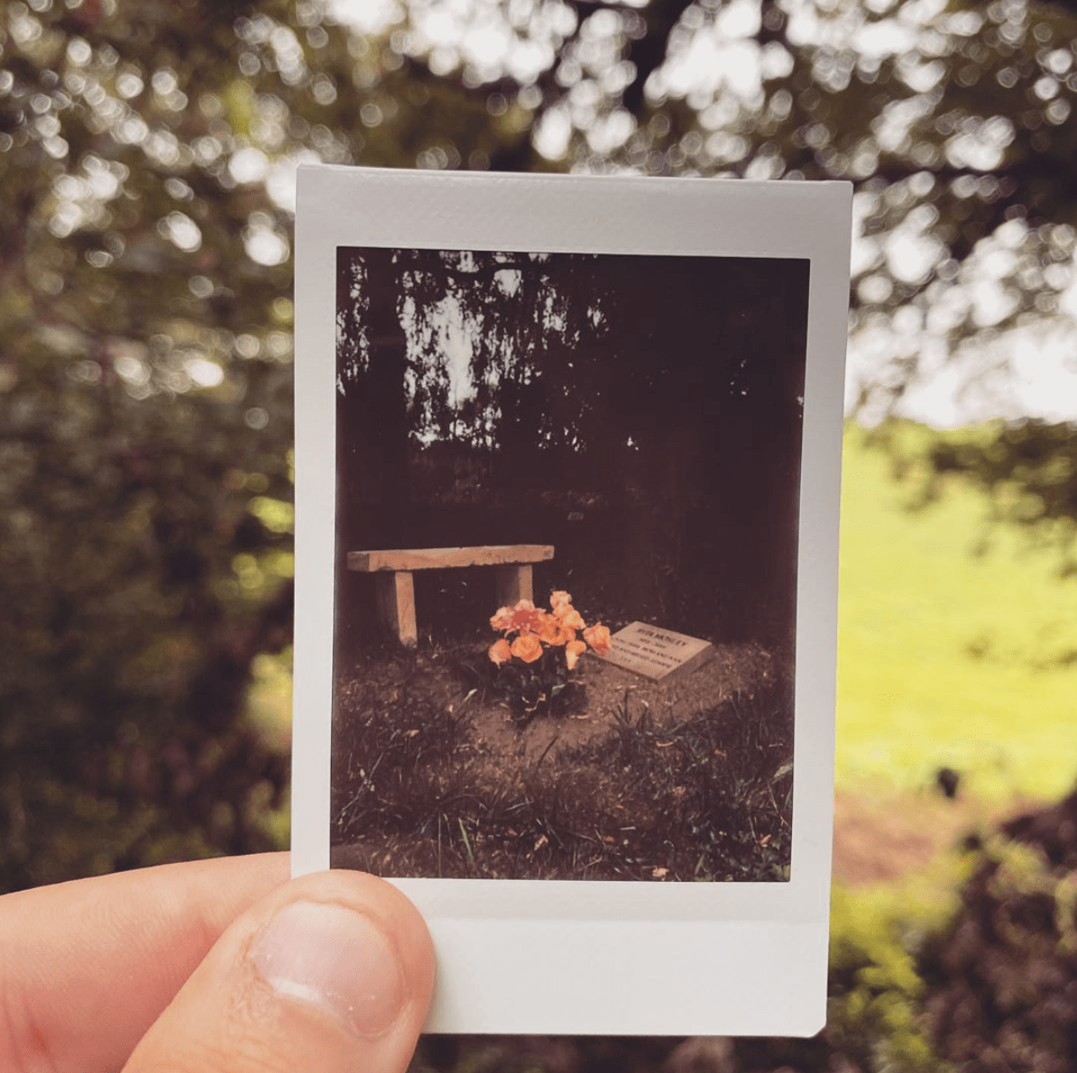 Funeral Streaming Polaroid